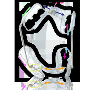 Orthoplanet snc